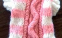 Pardesiu tricotat pt catelus