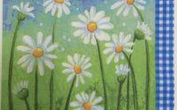 172 Servetel flori de musetel