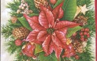 081 Servetel aranjament Poinsettia