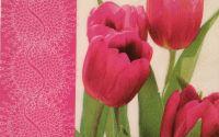 109 Servetel lalele roz