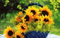 Servetel Floare de soare