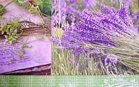 276 Servetel lavanda si floare de colt