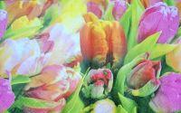 280 Servetel lalele multicolore