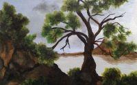 Peisaj cu copac