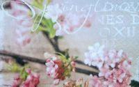 564 Servetel flori de cires