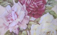 594 Servetel rosengarten