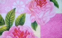 658 Servetel a hint of rose