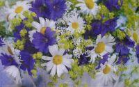 663 Servetel mix de flori