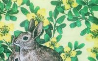 704 Servetel iepuri si flori