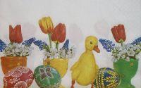 741 Servetel ghivecele cu flori