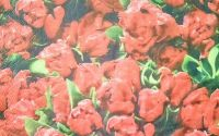 754 Servetel flori rosii
