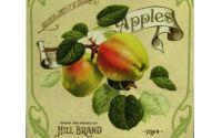 Tablou Reclama Retro Apples