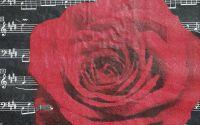 847 Servetel trandafir si portativ