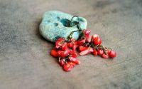 Cercei ciorchine - coral
