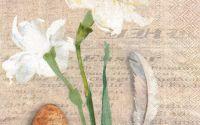 Servetel Narcisse Naturelle - S1136