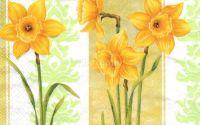 Servetel Harmony Narcissus - S1151