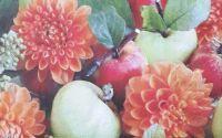 1001 Servetel crizanteme si mere