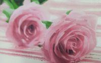 1056 Servetel beautiful roses