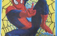 1073 Servetel Spiderman 2