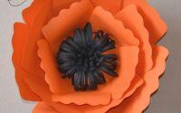 Floare portocalie cu negru