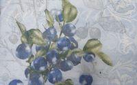 1105 Servetel Blueberriers