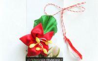 Steluta rosie - brosa floare stea