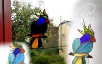 Papagal vitraliu