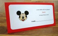 Plicuri dar Mickey