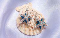 Cercei Stea de mare