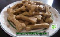 Biscuiti cu carne tocata de curcan