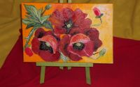 Set sevalet + panza floral
