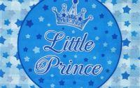 1450 Servetel little prince