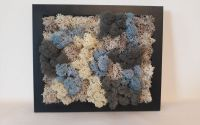 Tablou cu licheni- Imprecizie