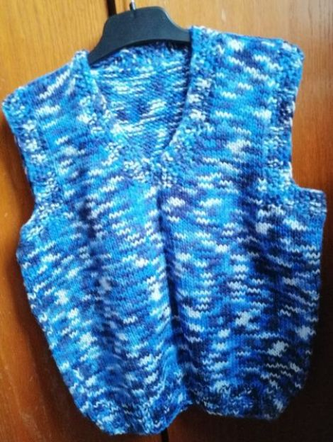 Vesta tricotata