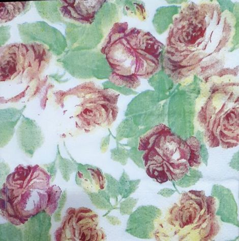 1546 Servetel flori