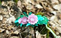 Coronita cu Flori de Hartie
