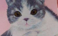 Pictura in acrilice minicanvas portret pisica