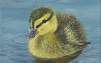 Tablou pictat acrilice pe panza canvas Baby duck