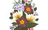 Calendar de perete 2020 Armonia Florilor Presate
