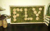 Tablou personalizat cu licheni stabilizati