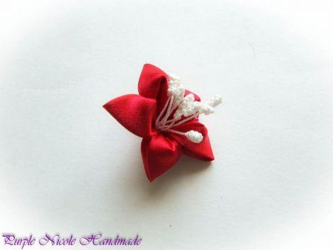 Steluta roie - brosa floare stea