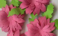 Flori 3Droz intens