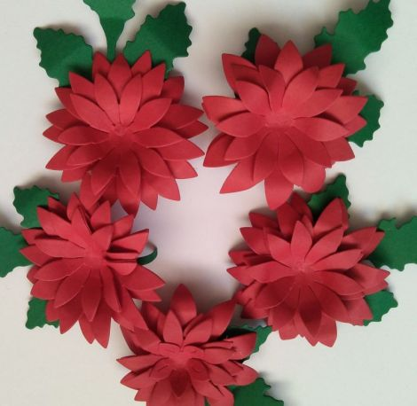 Flori roii 3D