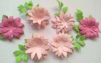 Flori 3 D-5 cm