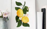 Lemons - ORIGINAL