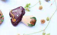 Ciuperca - brosa
