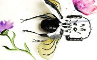 Brosa statement Goliath beetle