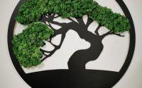 Tablou cu licheni Bonsai  Copacul vietii