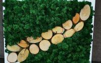 Tablou cu licheni si lemn