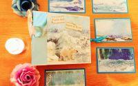 Album Foto Arctic